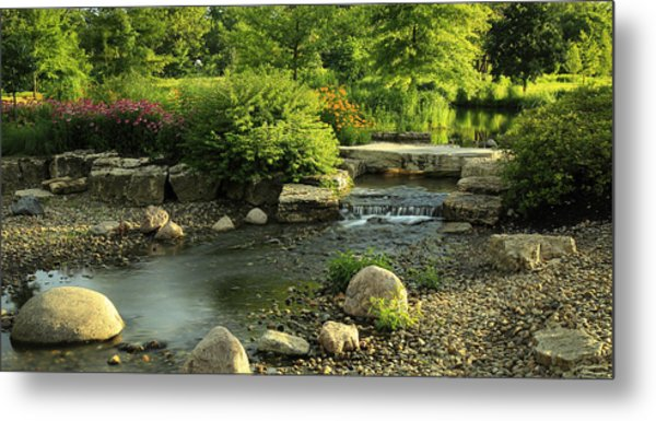 Summer In Forest Park Metal Print