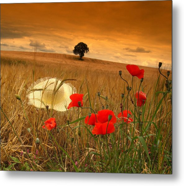 Summer In Ireland. Metal Print by Edward Dullard