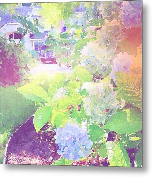 Summer In My Garden Metal Print