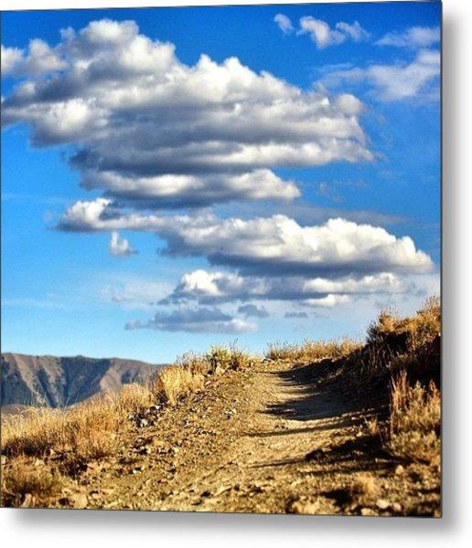 #summer In #sunvalley #idaho #trails Metal Print