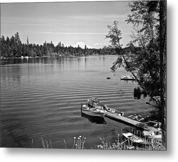Summer On The Lake Metal Print