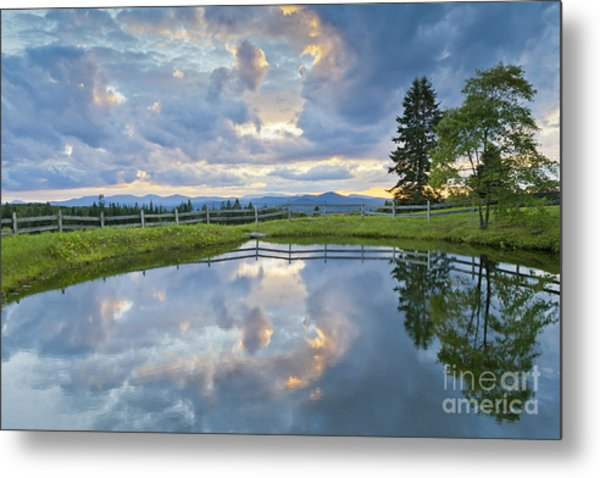 Summer Pond Reflection Metal Print