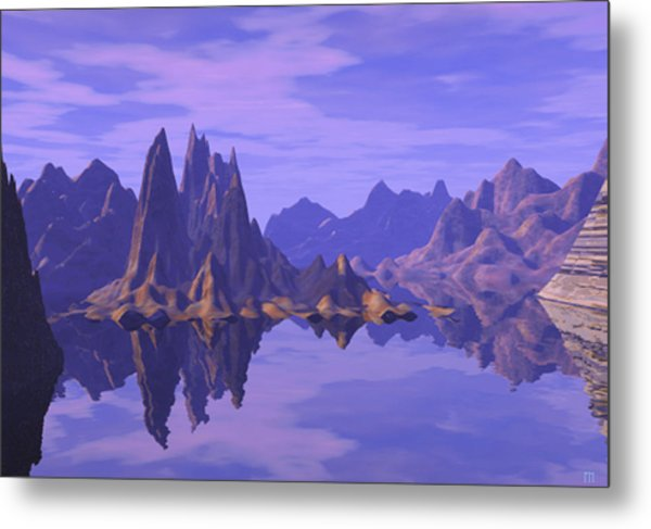 Summer Reflection  Metal Print