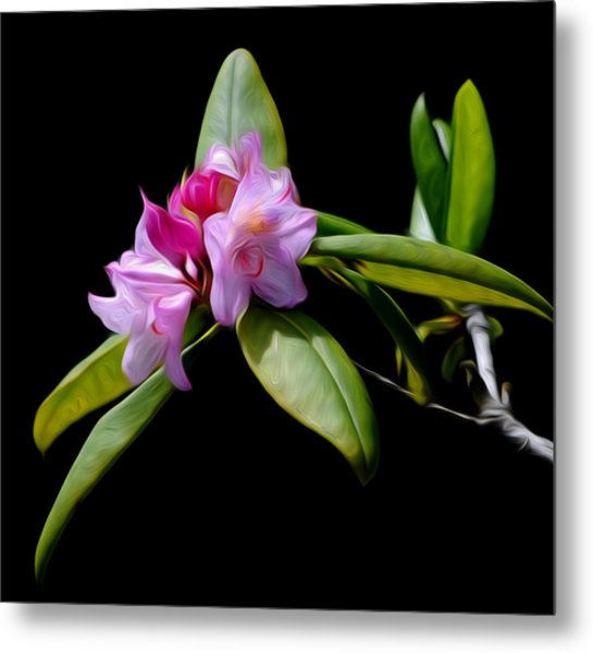Summer Rhododendron Metal Print