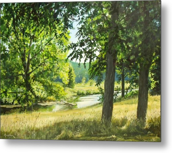 Summer Stream Metal Print