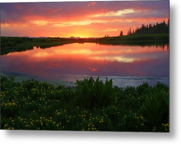 Summer Sunset Above Lake Creek. Metal Print