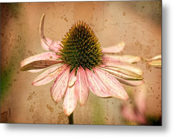 Summer Survival Metal Print