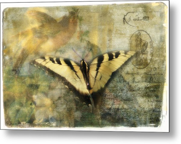 Summer Visitors Metal Print