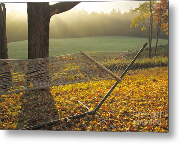 Summer's Repose Metal Print