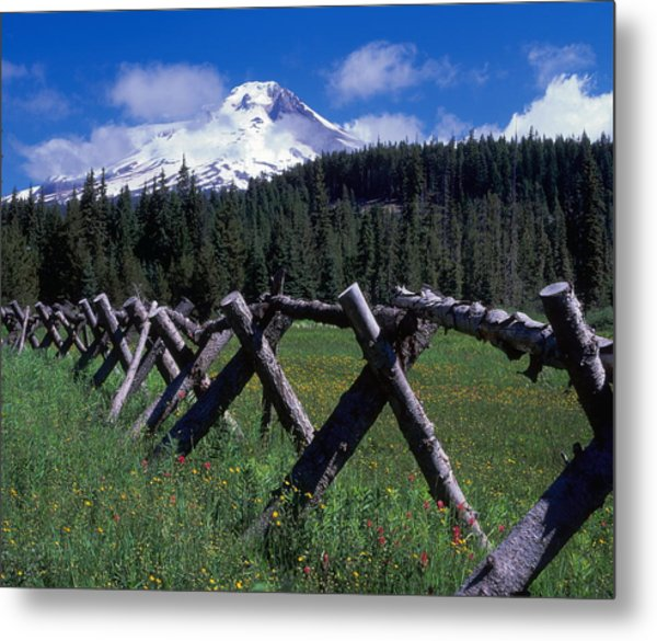 Summit Meadow Metal Print