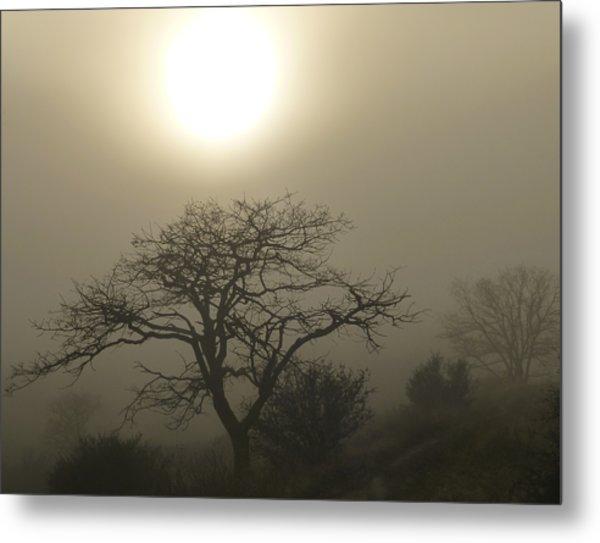 Sun And Fog Metal Print