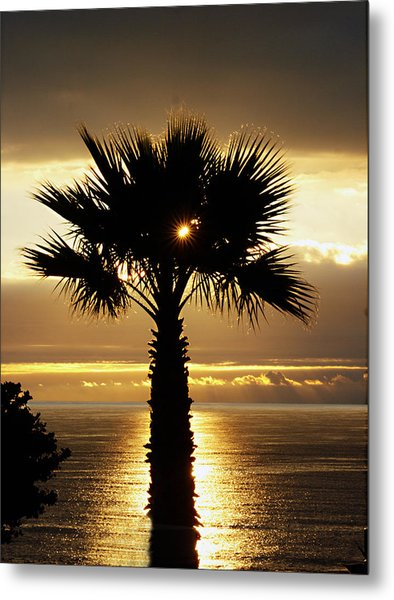 Sun And Palm And Sea Metal Print