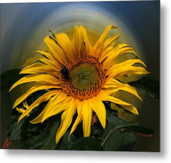 Sun Flower Summer 2014 Metal Print
