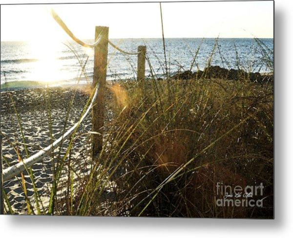 Sun Glared Grassy Beach Posts Metal Print