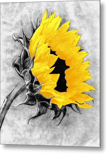 Sun Power Metal Print