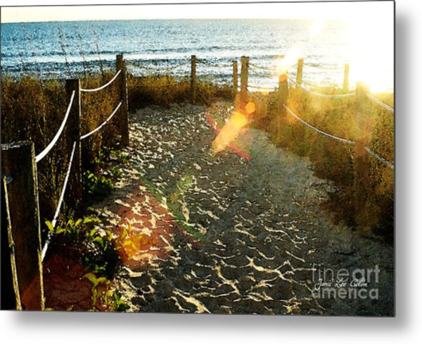 Sun Ray Beach Path Metal Print