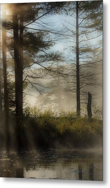 Sun Up At Lowell Lake 2 Metal Print