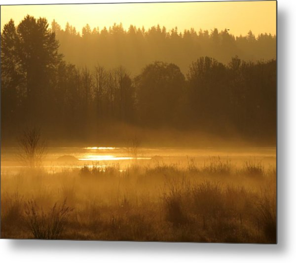 Sun Up At The Refuge Metal Print
