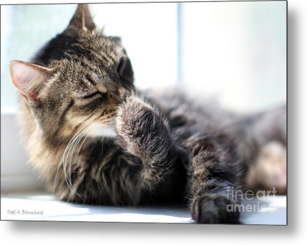 Sunbathing Metal Print