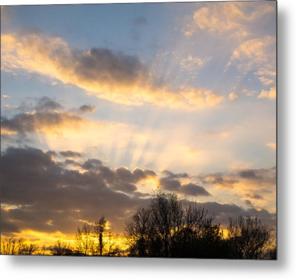 Metal Print featuring the photograph Sunbeams by David Coblitz