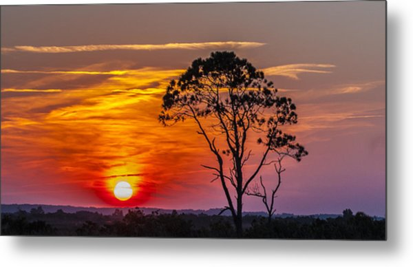 Sundown With Tree Metal Print
