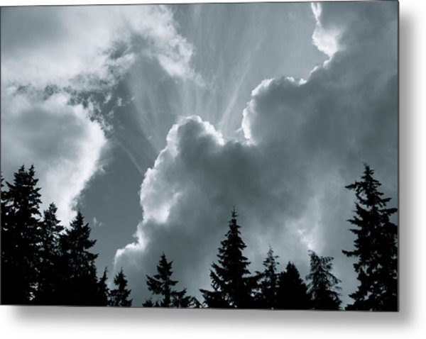 Sunflare Metal Print by Darren Edwards