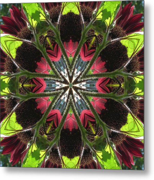 Sunflower And Green Leaf Metal Print