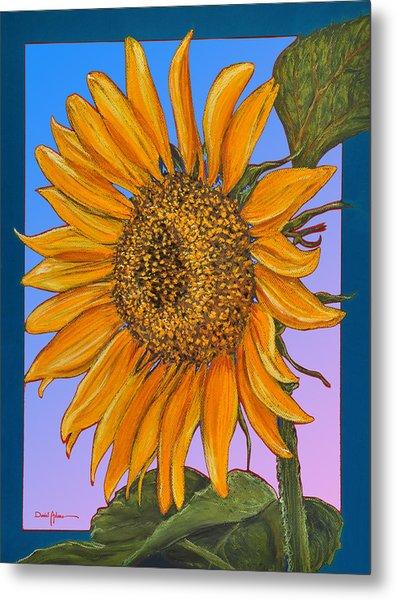Da154 Sunflower By Daniel Adams Metal Print