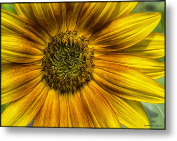 Sunflower In Oil Paint Metal Print