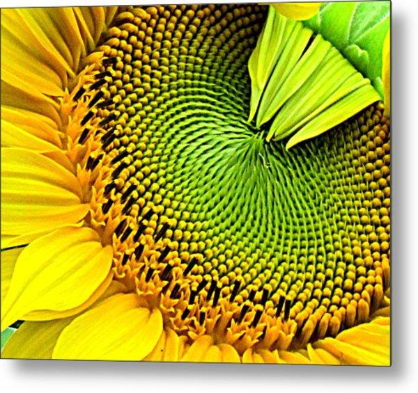 Kaleidescope Sunflower Metal Print