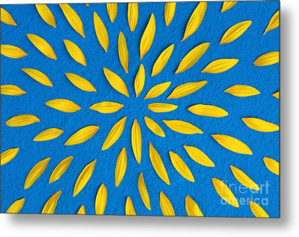 Sunflower Petals Pattern Metal Print