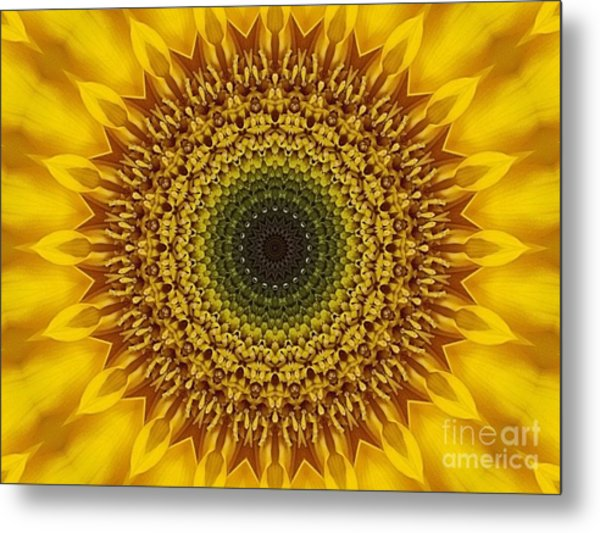Sunflower Sunburst Metal Print by Annette Allman