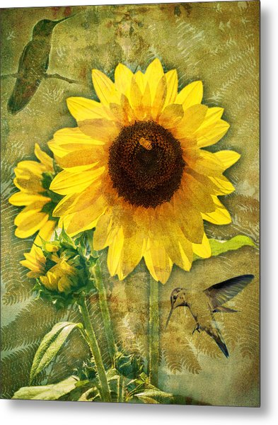 Metal Print featuring the photograph Sunflower With Bee Number Nineteen by Bob Coates