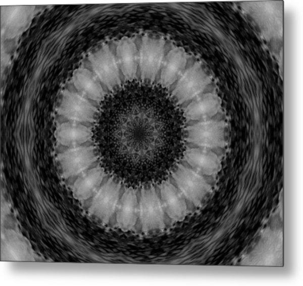 Sunflowerkal1 Metal Print by Kathleen Streitenberger-Rupert