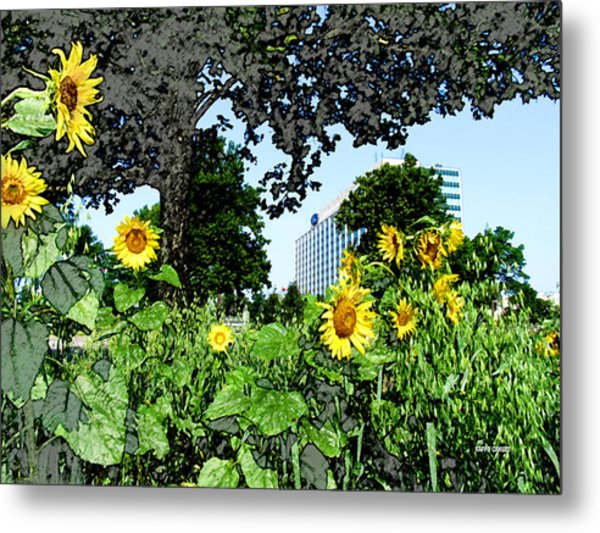 Sunflowers Outside Ford Motor Company Headquarters In Dearborn Michigan Metal Print