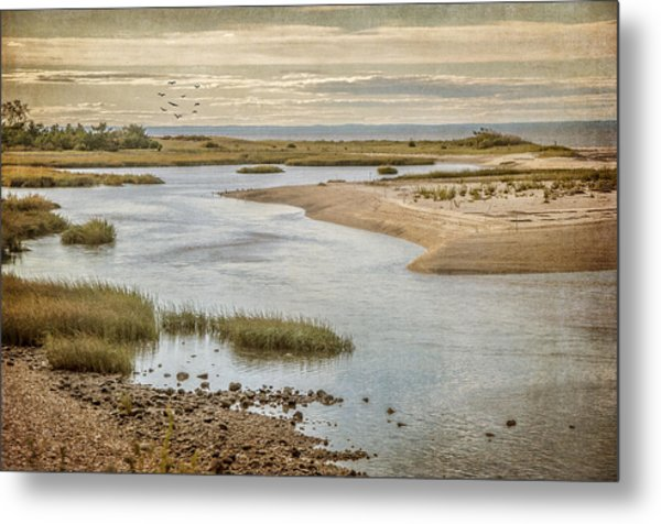Sunken Meadow Metal Print