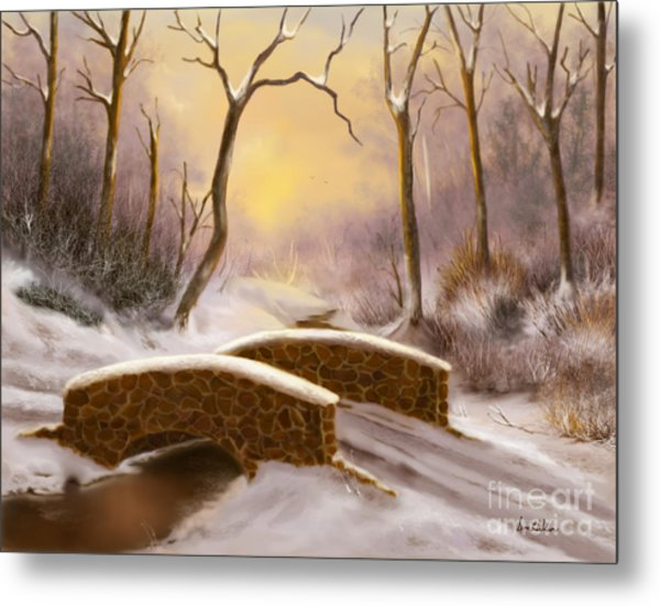 Sunlight In Winter Metal Print