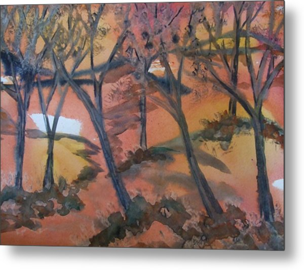 Sunlit Forest Metal Print