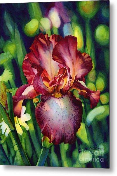Sunlit Iris Metal Print