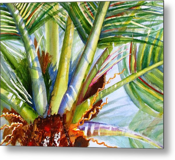 Sunlit Palm Fronds Metal Print