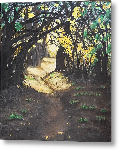 Sunlit Trail Metal Print