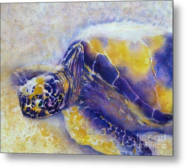 Sunning Turtle Metal Print