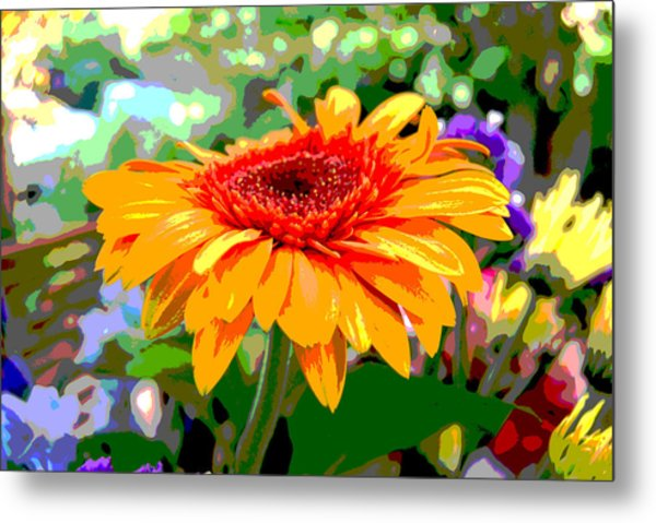 Metal Print featuring the photograph Sunny Gerbera by Jocelyn Friis