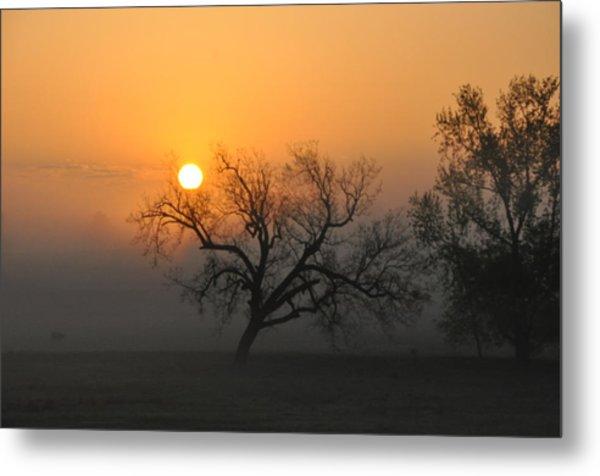 Sunrise And Fog Metal Print