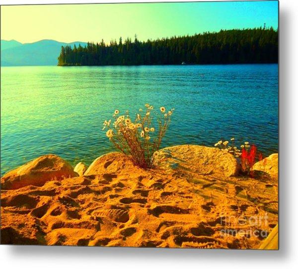 Sunrise At Daisy Lake Metal Print