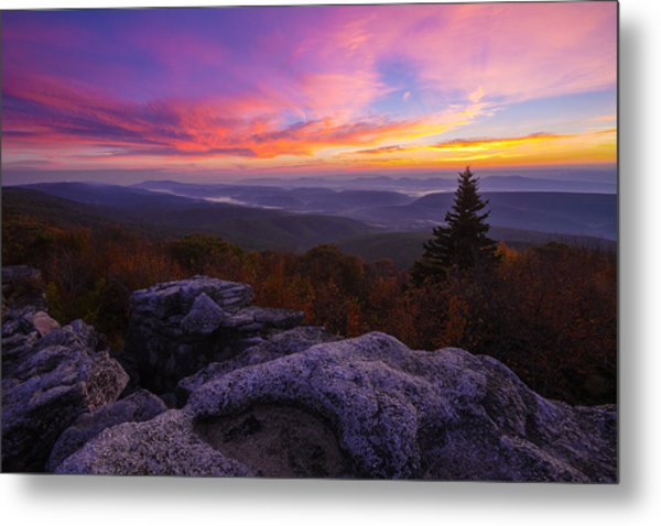 Sunrise At Dolly Sods In West Virginia Metal Print