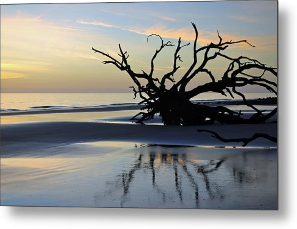 Sunrise At Driftwood Beach 6.6 Metal Print