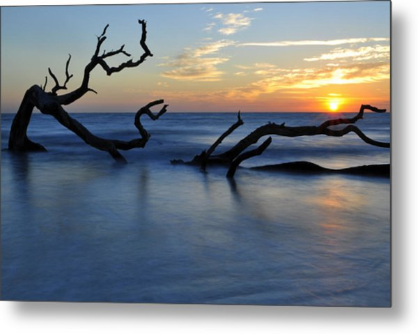 Sunrise At Driftwood Beach 7.3 Metal Print