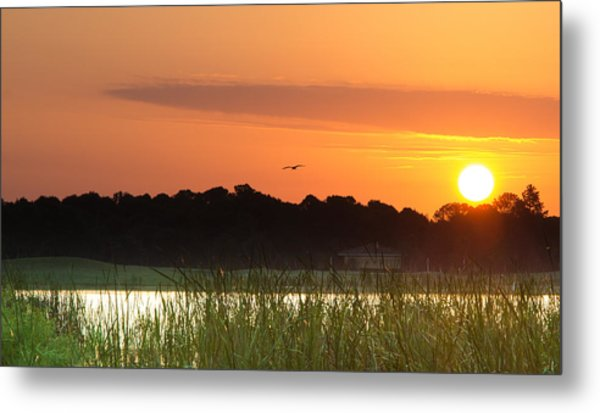 Sunrise At Lakewood Ranch Florida Metal Print