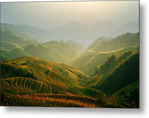 Sunrise At Terrace In Guangxi China 3 Metal Print